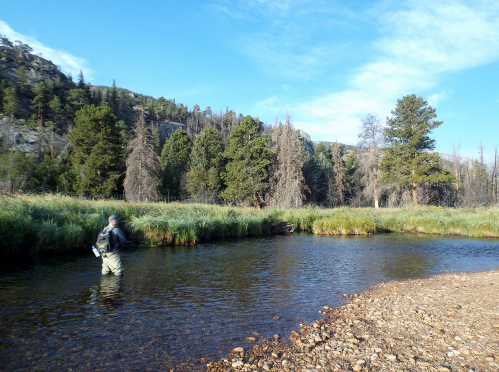 Fly fishing in Rocky Mountain National Park