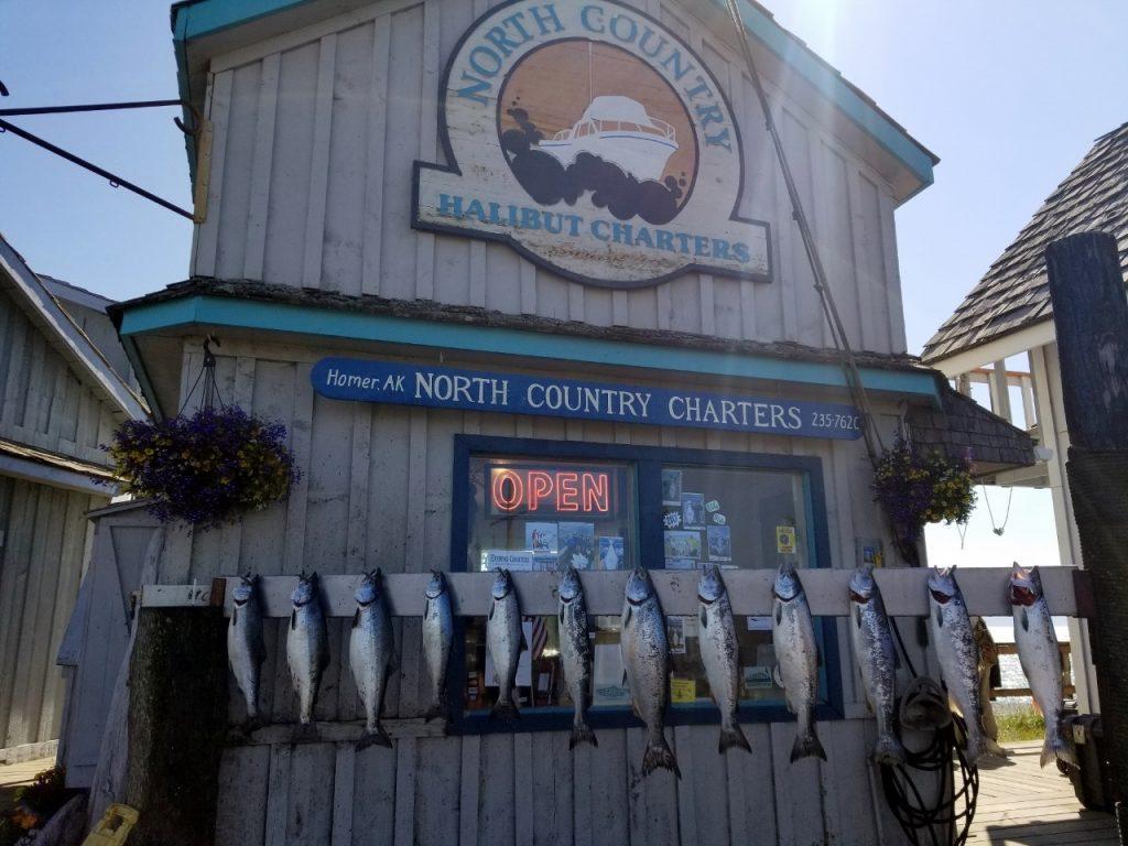 Fishing in Homer Alaska