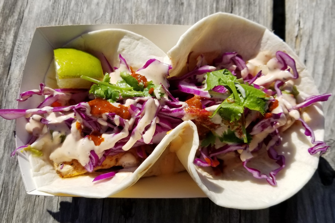 Halibut Taco from Homer Farmer's Market in Alaska