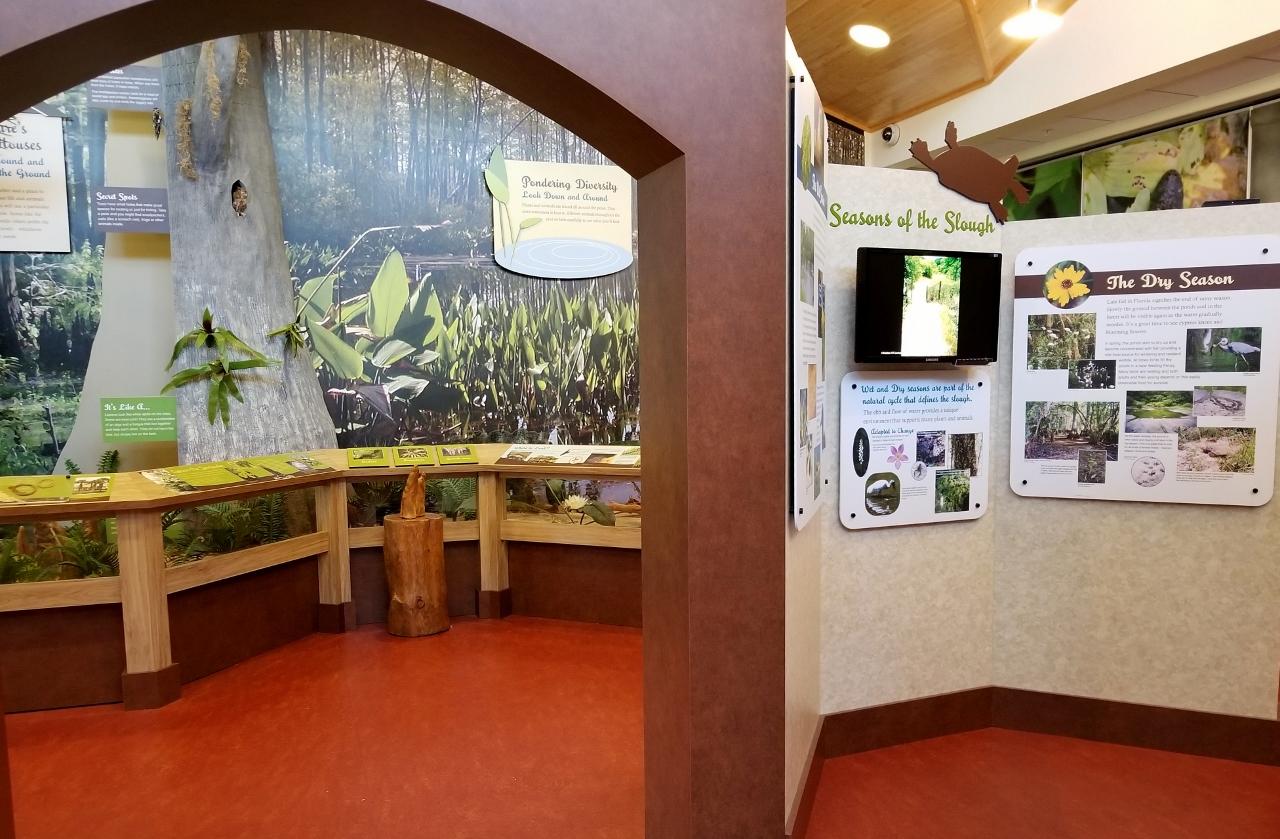 Interpretive center at six mile cypress slough preserve