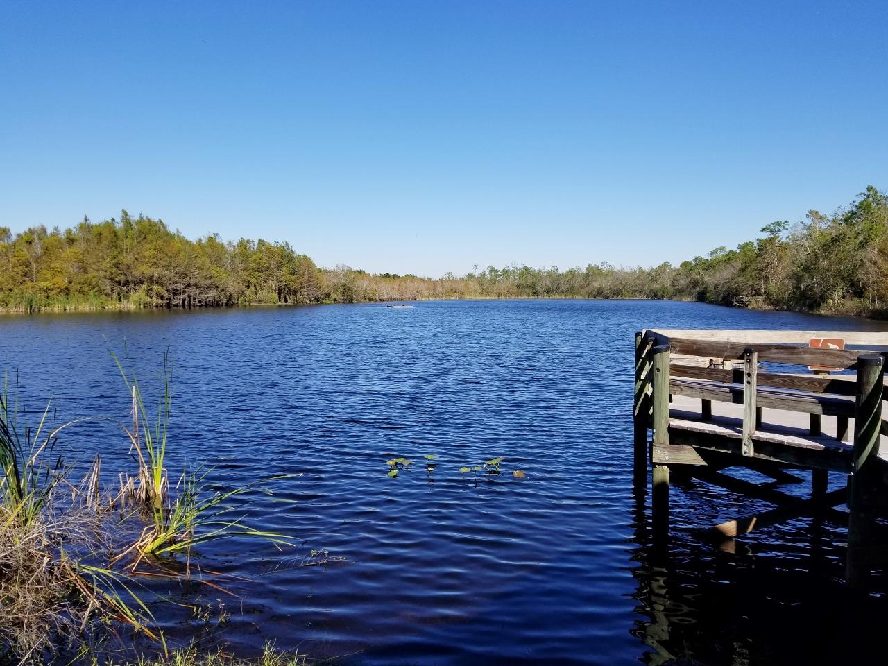Gator Lake Six Mile cypress slough preserve