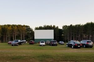 Secret Life of Pets/Dogs Journey/Aladdin and more are playing @ Stardust Twin Drive-In Theater