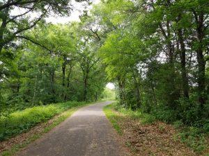Cedar Side Trail Rice Lake