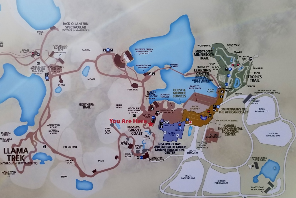 MN Zoo map
