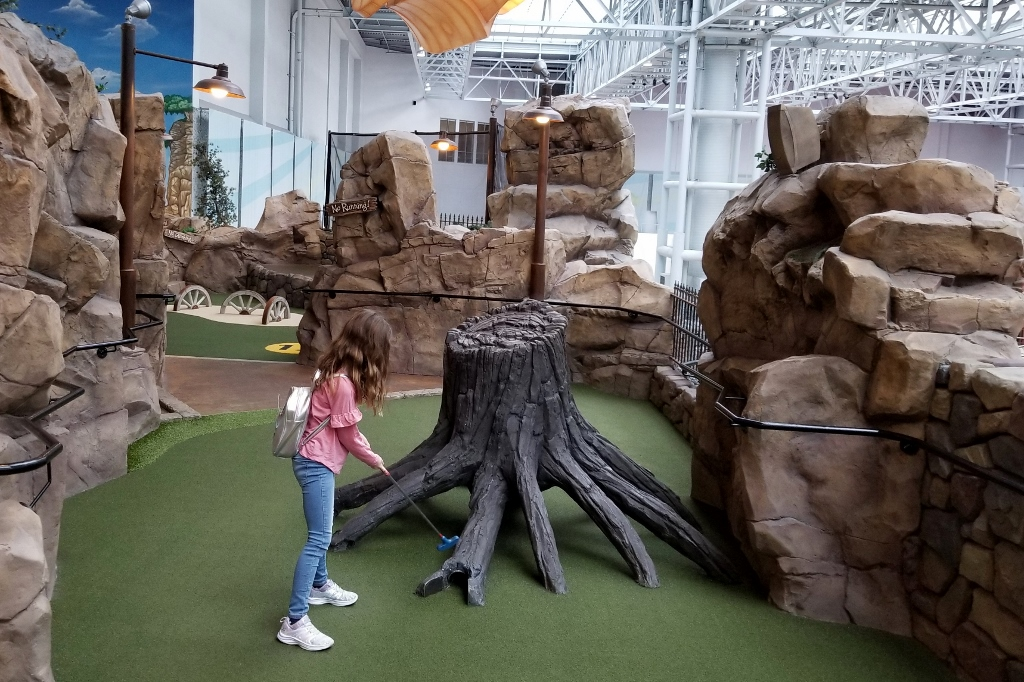 Moose Mountain at Mall of America