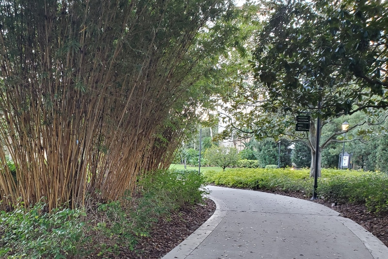 Sidewalk between Hard Rock Hotel and Universal Orlando